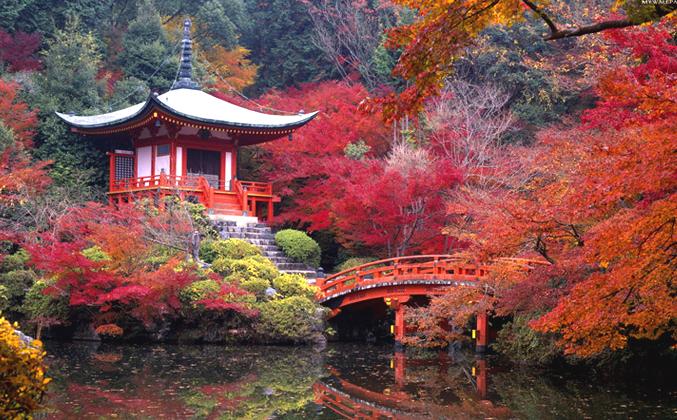 Corso giardini giapponesi architettura feng shui for Giardini giapponesi milano